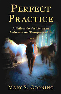 Perfect Practice by Mary Corning
