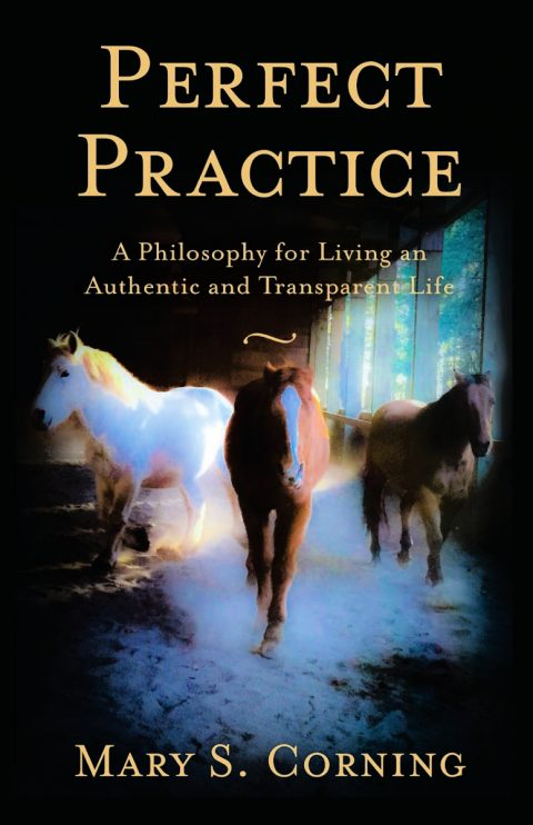 Perfect Practice Book Cover