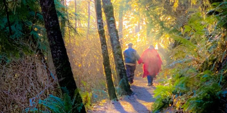 couple walking together through forest