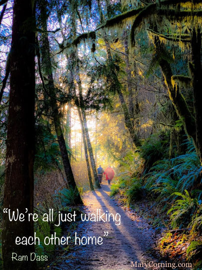 walking through forest together with Ram Dass quote